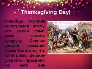 Thanksgiving Day! Индейцы обучили пилигримов всему, что умели сами, даже сажа