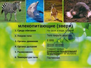 млекопитающие (звери) 1.Среда обитания 2. Покров тела 3. Органы движения 4. О