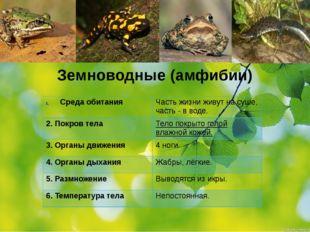 Земноводные (амфибии) Среда обитания 2. Покров тела 3. Органы движения 4. Орг