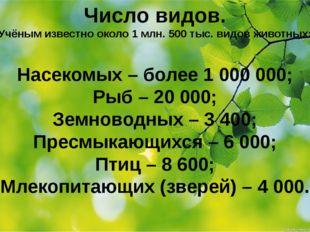 Число видов. Учёным известно около 1 млн. 500 тыс. видов животных: Насекомых