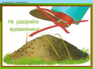 Не разорять муравейник.