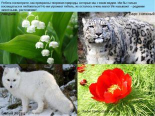 Ребята посмотрите, как прекрасны творения природы, которые мы с вами видим. И
