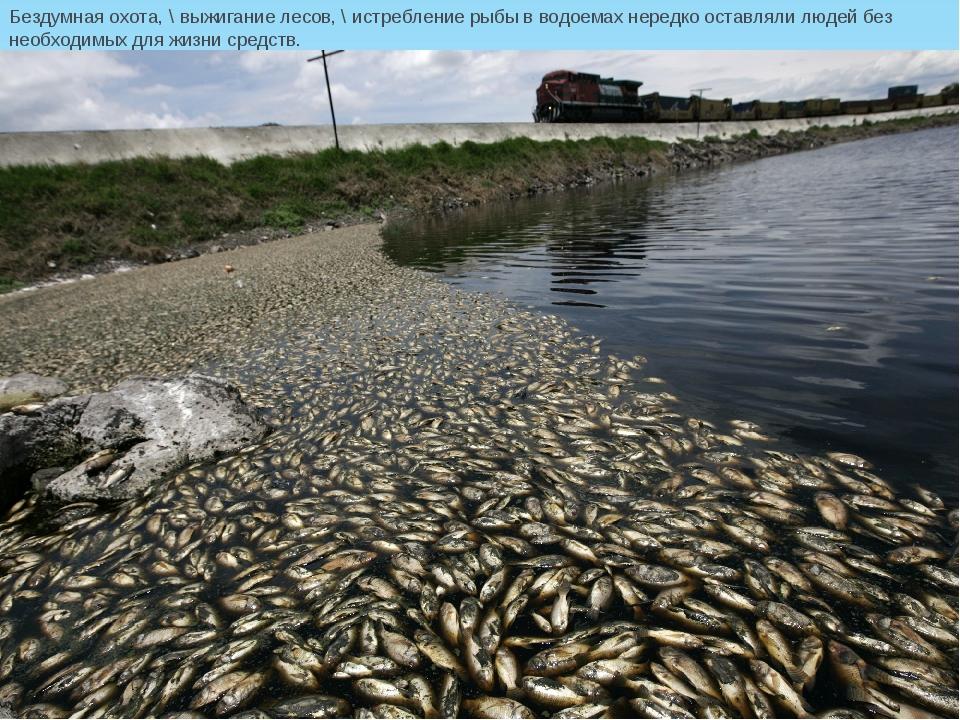 Бездумная охота, \ выжигание лесов, \ истребление рыбы вводоемах нередко ост...