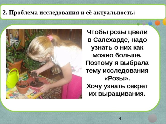 2. Проблема исследования и её актуальность: Чтобы розы цвели в Салехарде, на...