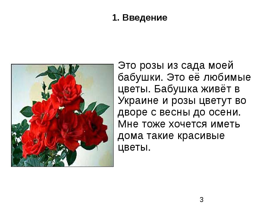 1. Введение Это розы из сада моей бабушки. Это её любимые цветы. Бабушка живё...