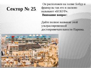 Сектор № 25. Он расположен на холме Бобур и французы так его и ласково называ