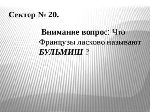 Сектор № 20. Внимание вопрос: Что Французы ласково называют БУЛЬМИШ ?