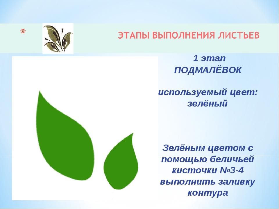 1 этап ПОДМАЛЁВОК используемый цвет: зелёный Зелёным цветом с помощью беличь...