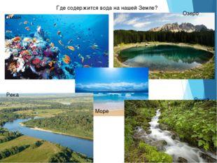 Где содержится вода на нашей Земле? Океан Озеро Море Река Ручей