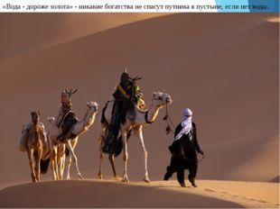 «Вода - дороже золота» - никакие богатства не спасут путника в пустыне, если
