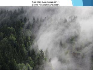 Как сосулька замирает. \ В лес туманом заползает,