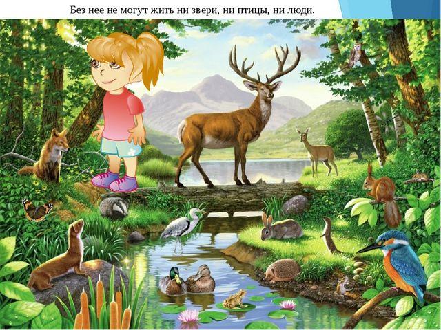 Без нее не могут жить ни звери, ни птицы, ни люди.