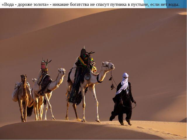 «Вода - дороже золота» - никакие богатства не спасут путника в пустыне, если...
