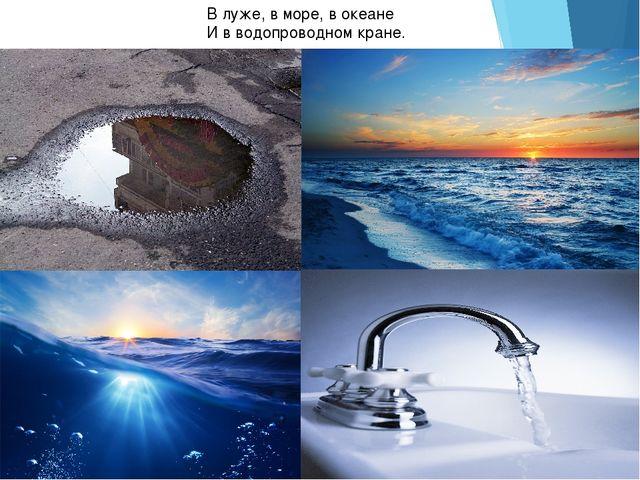 В луже, в море, в океане И в водопроводном кране.
