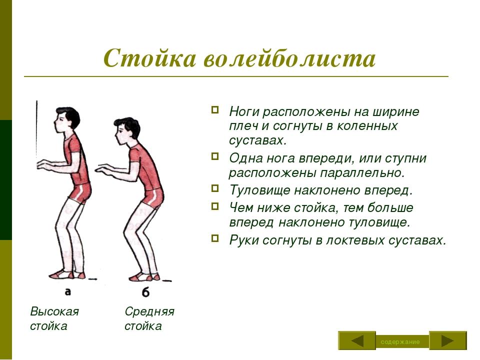 план конспект урока по волейболу верхняя подача Николаевич Толстой оставил