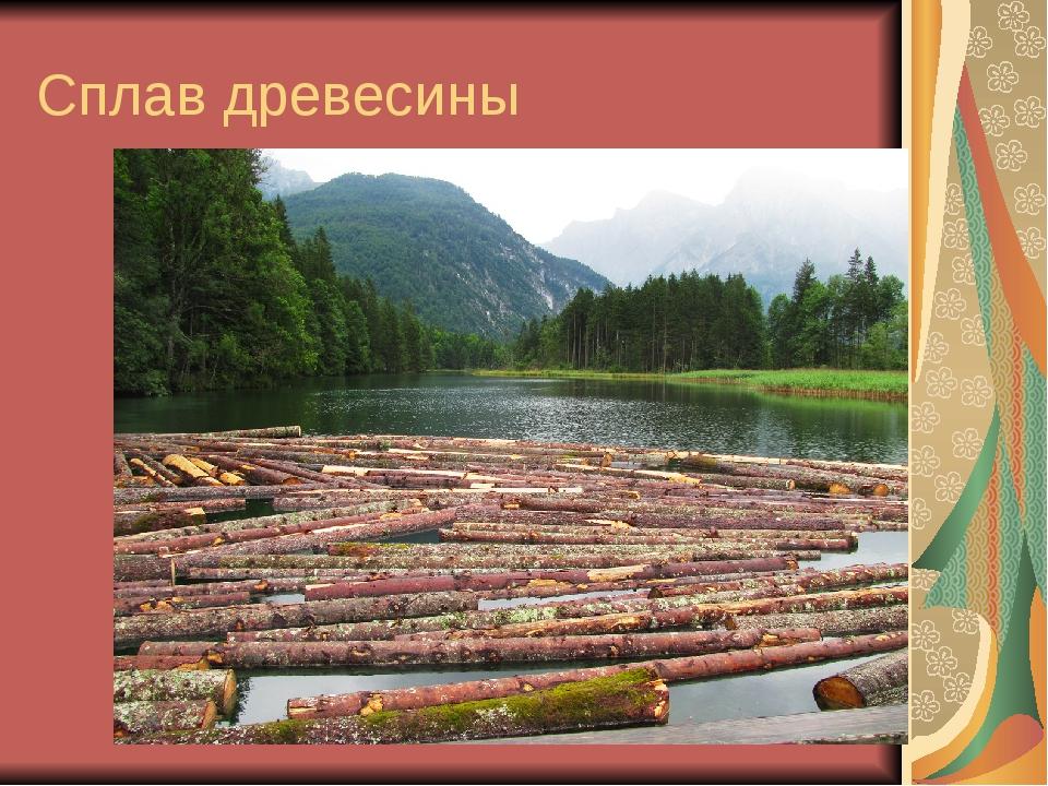 Сплав древесины