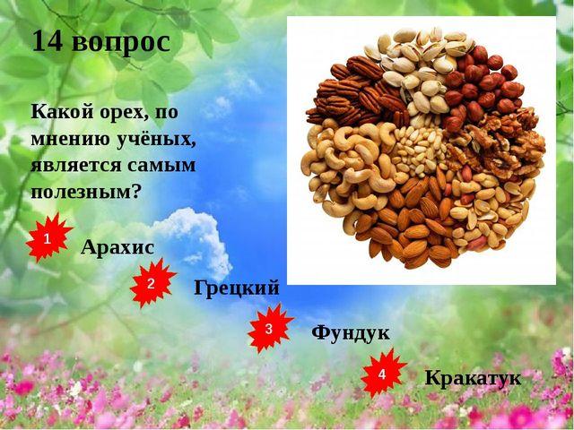 1 2 3 4 Арахис Грецкий Фундук Кракатук 14 вопрос Какой орех, по мнению учёных...