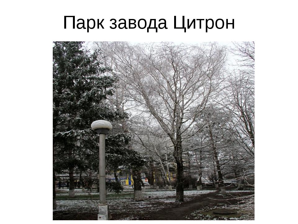Парк завода Цитрон