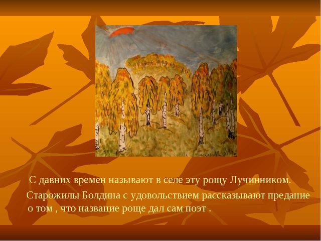 С давних времен называют в селе эту рощу Лучинником. Старожилы Болдина с удо...