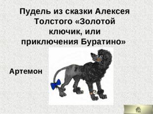 Артемон Пудель из сказки Алексея Толстого «Золотой ключик, или приключения Бу