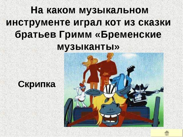 На каком музыкальном инструменте играл кот из сказки братьев Гримм «Бременск...