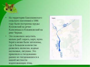 На территории Баклушинского сельского поселения в 1986 году были построены пр