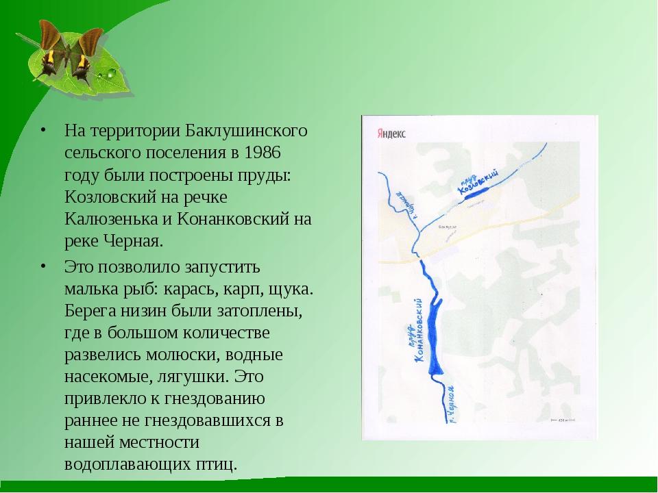 На территории Баклушинского сельского поселения в 1986 году были построены пр...
