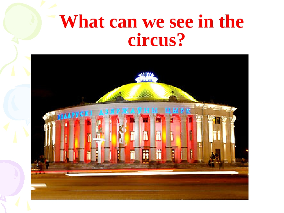 What can we see in the circus?
