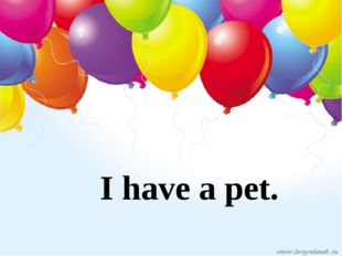 I have a pet.