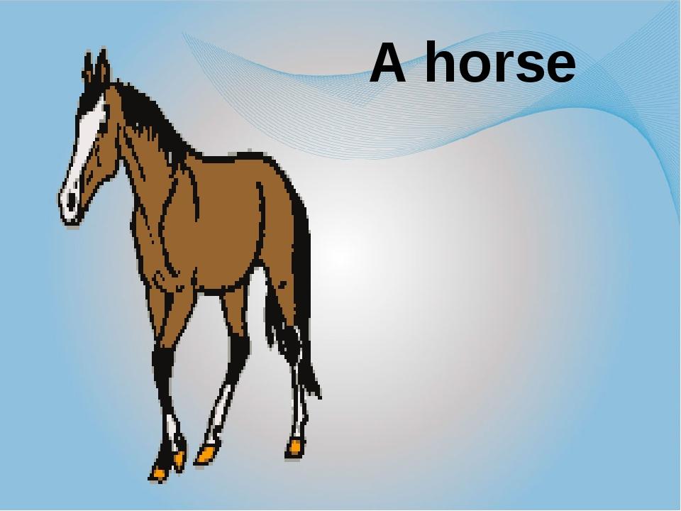 A horse A horse