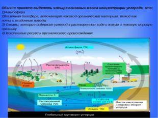 Обычно принято выделять четыре основных места концентрации углерода, это: 1)А