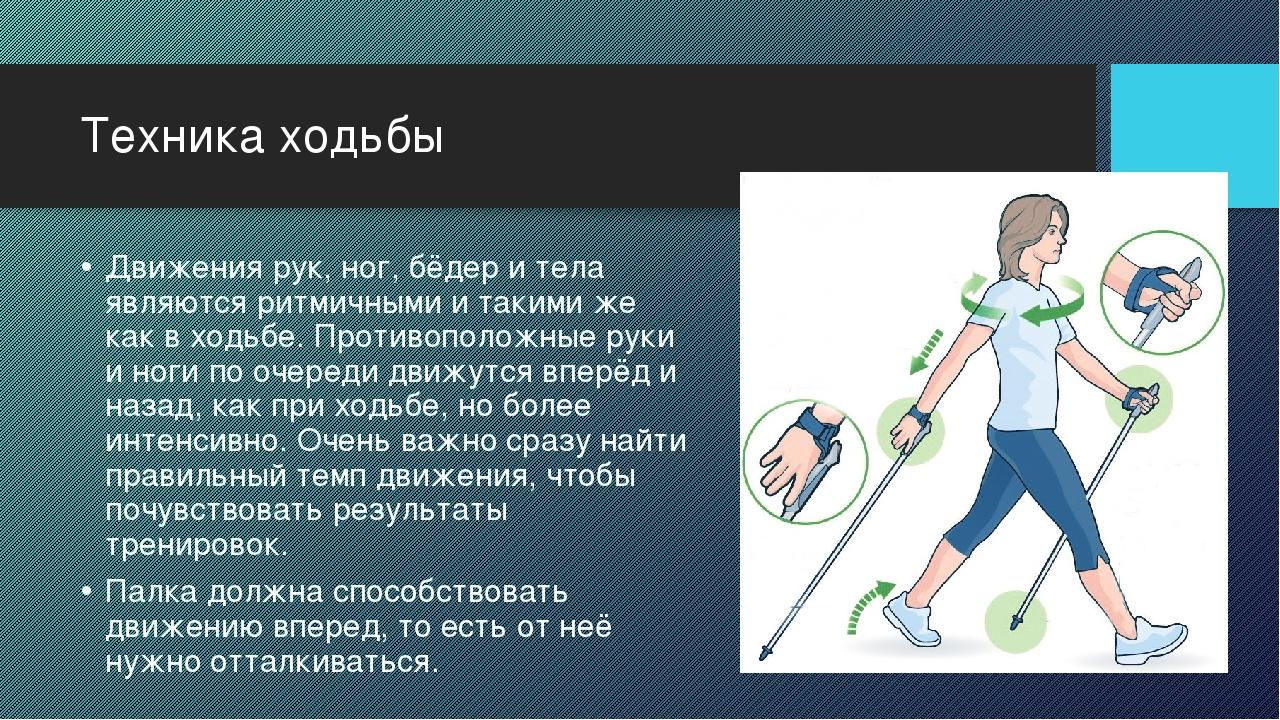 Техника ходьбы Движения рук, ног, бёдер и тела являются ритмичными и такими ж...