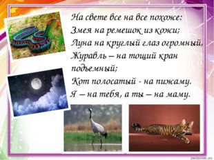 На свете все на все похоже: Змея на ремешок из кожи; Луна на круглый глаз огр