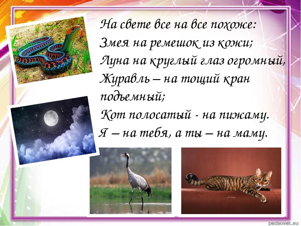 На свете все на все похоже: Змея на ремешок из кожи; Луна на круглый глаз огр...