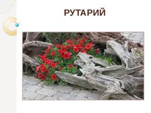 РУТАРИЙ