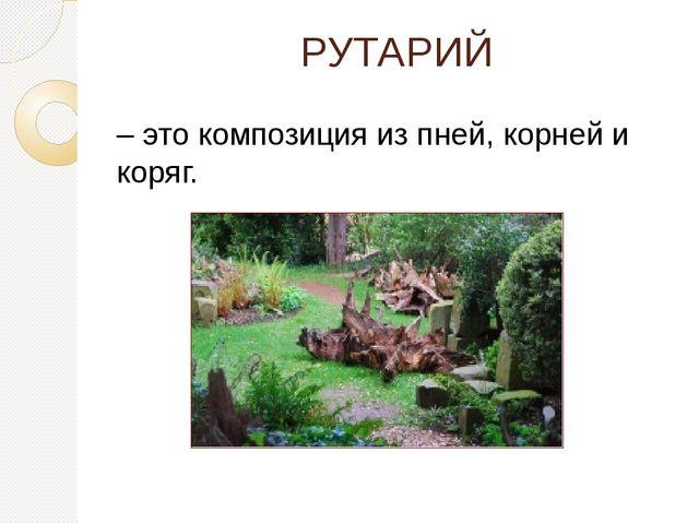 РУТАРИЙ – это композиция из пней, корней и коряг.