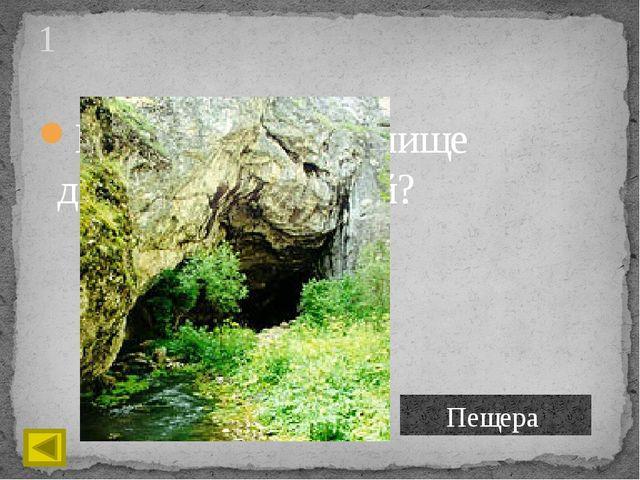 Материал, из которого изготавливали древние орудия труда? 3 Камень