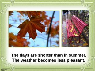 The days are shorter than in summer. The weather becomes less pleasant. © Фо