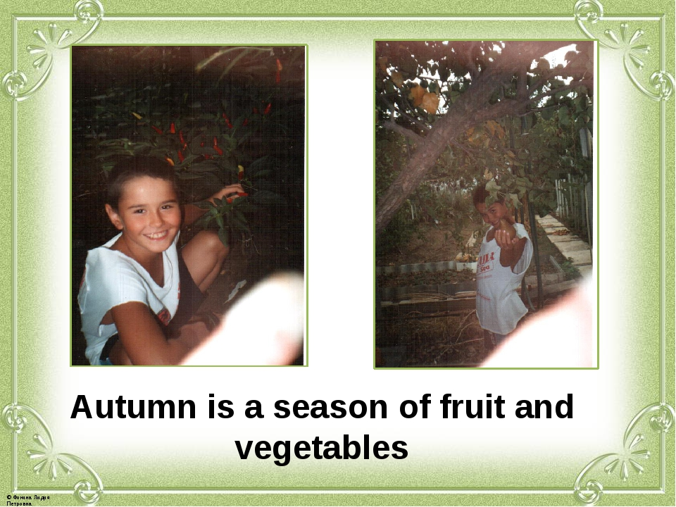 Autumn is a season of fruit and vegetables © Фокина Лидия Петровна