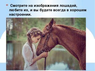 Смотрите на изображения лошадей, любите их, и вы будете всегда в хорошем нас