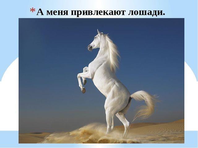 А меня привлекают лошади.