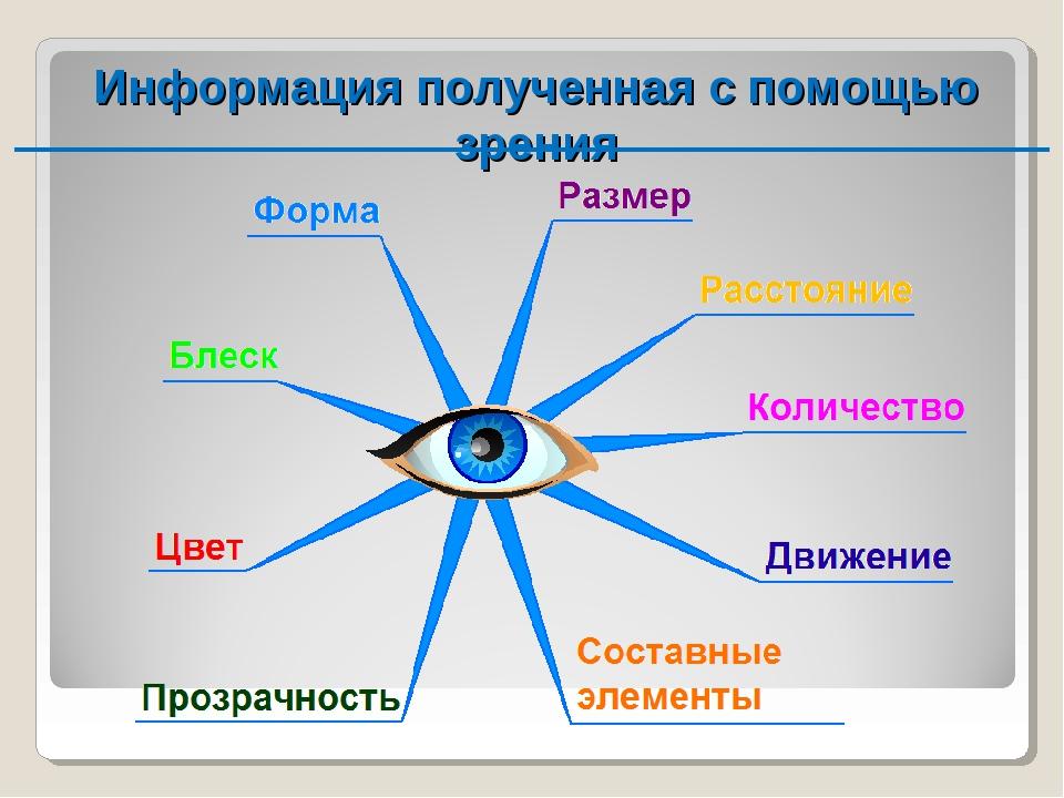 Информация полученная с помощью зрения