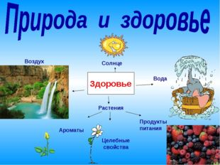 Здоровье Солнце Вода Воздух Растения Ароматы Целебные свойства Продукты питания