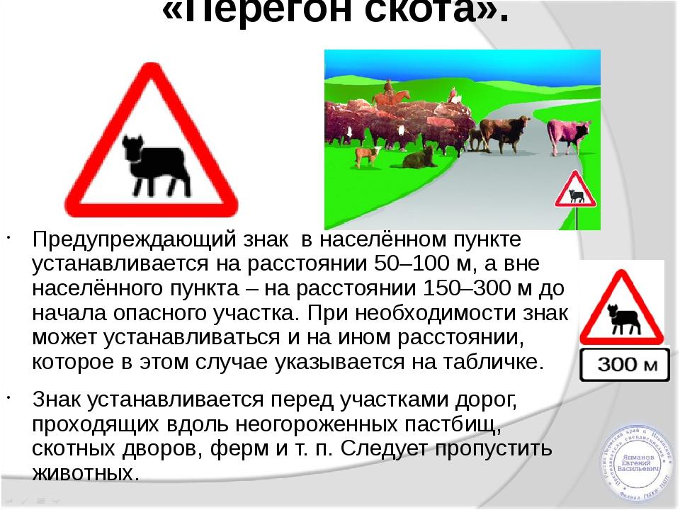 «Перегон скота». Предупреждающий знак в населённом пункте устанавливается на...