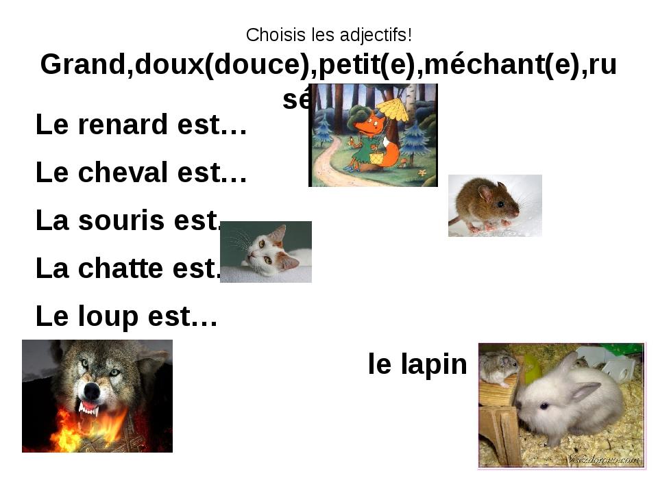 Choisis les adjectifs! Grand,doux(douce),petit(e),méchant(e),rusé(e) ? Le ren...