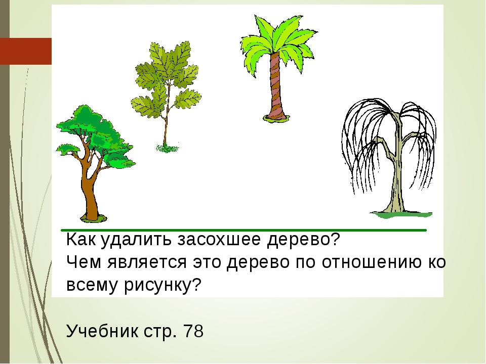 Как удалить засохшее дерево? Чем является это дерево по отношению ко всему ри...