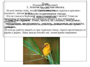 Изложение (Описание) Иволга. Из всех певчих птиц, лесных музыкантов, самая с