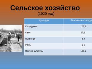 Сельское хозяйство (1929 год) Культуры Засеянная площадь(га) Огородные 102,1