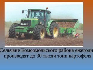 Сельчане Комсомольского района ежегодно производят до 30 тысяч тонн картофеля