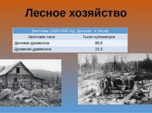 Лесное хозяйство Заготовки 1929-1930 годДальлесиЛесзаг Заготовки леса Тысяч к